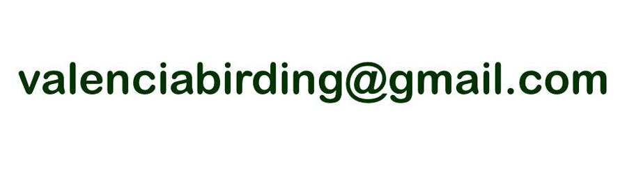 valenciabirding@gmail