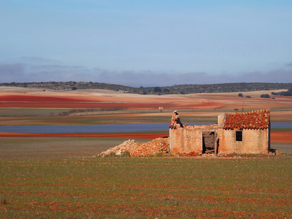 Beautiful winter tones on the steppe of Eastern Spain