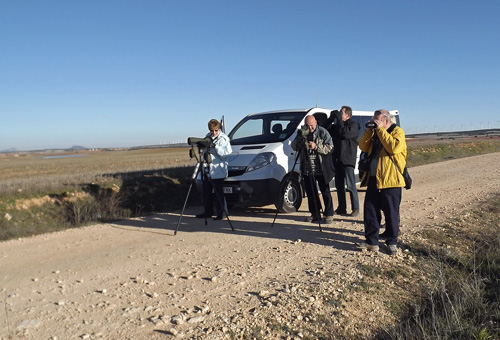 Scanning across the steppe gave good views of Great Bustards, Calandra Larks and Hen Harrier