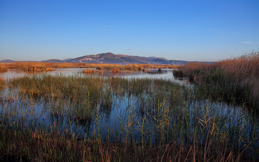 Valencia´s Coastal Wetlands