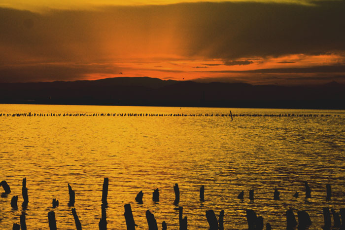 Sunset over Albufera de Valencia (P.Gudgeon)