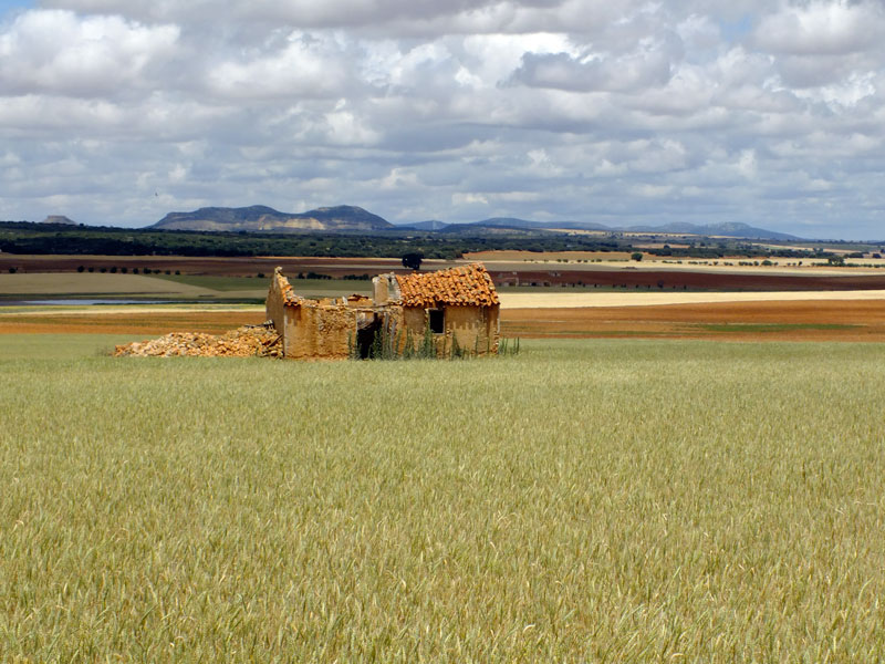 The plains of Castilla de la Mancha
