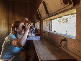Guided bird watching at Albufera de Valencia
