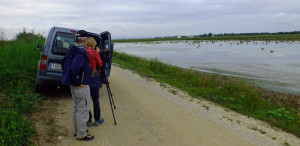 2 Day Wetland Birding Trip to Valencia