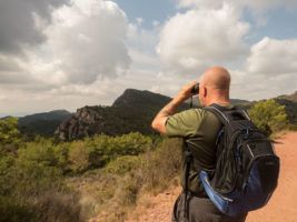 4-Day Birding and Photography Trip from Valencia.