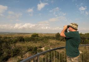 2-Day Bird Watching Trip from Valencia