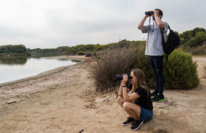 Discovering the bird life of Valencia
