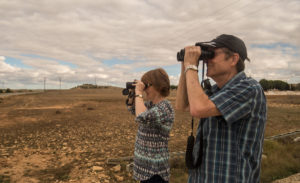 Autumn birding on the steppe