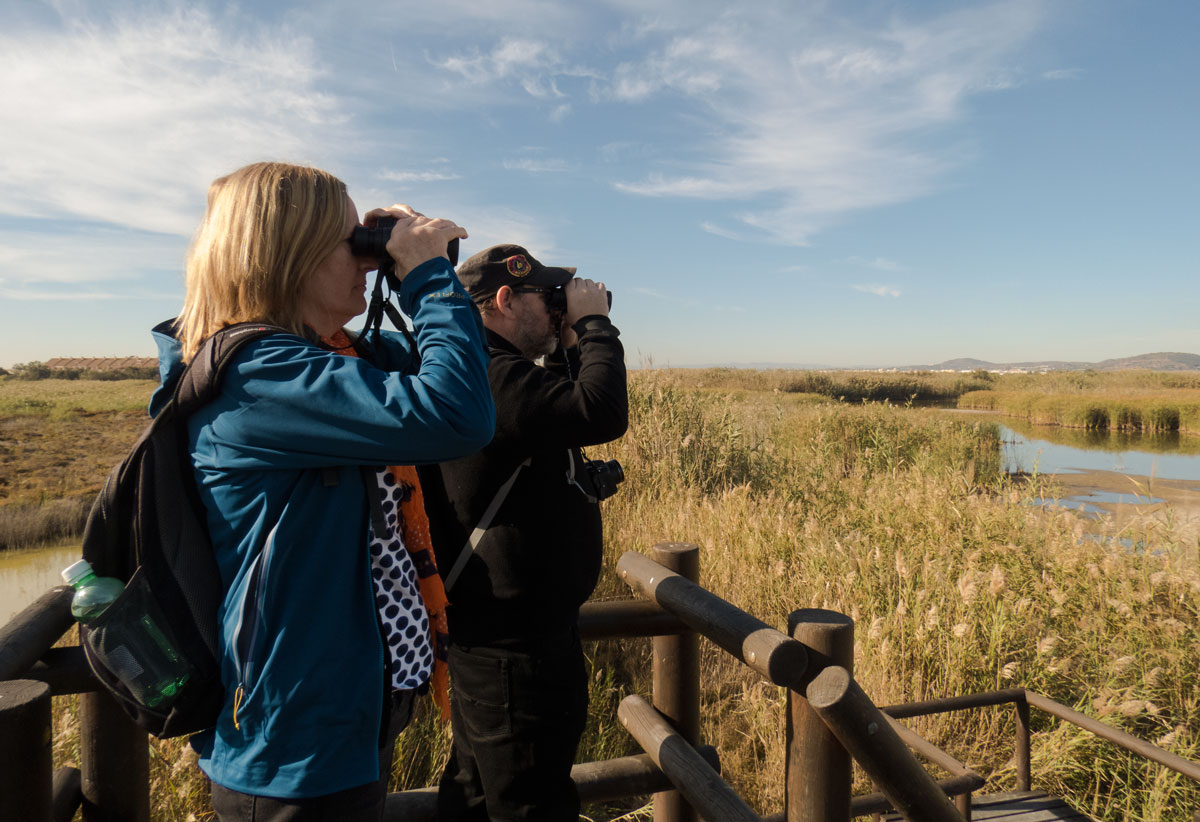 bird watching Advice on binoculars for birdwatching including, what to look for & reviews helping you find the best birding binoculars.