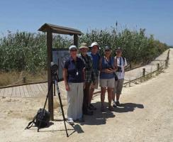 Bird Watching at Albufera de Valencia.