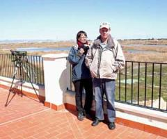 Guided Bird Watching Trip to Albufera de Valencia