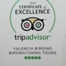 Trip Advisor Certificate of Excellence!